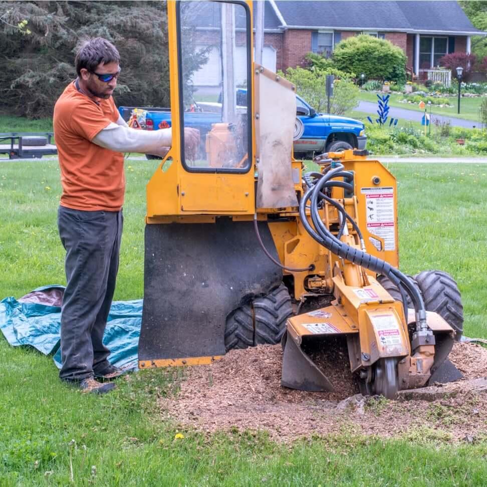 employee using tree stump grinding machine in elgin