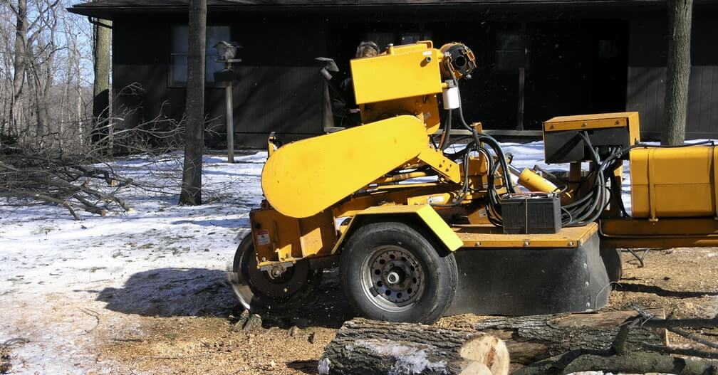 tree stump removal and grinding elgin